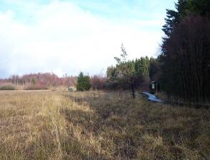 Schwarzes Moor- Rhön